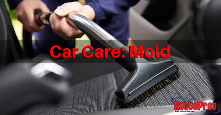 How to Prevent and Remove Mold in your Car