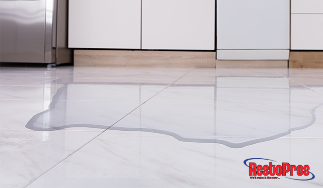 How to Avoid Water Damage in the Kitchen - RestoPros