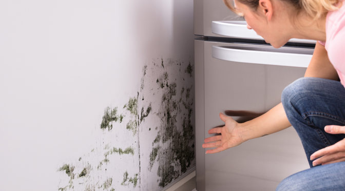 Can I Get Sick from Mold Exposure