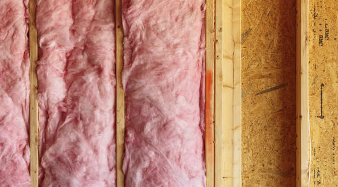 Can Mold Grow in Insulation