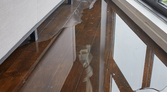 Tell-Tale Signs You Have Water Damage