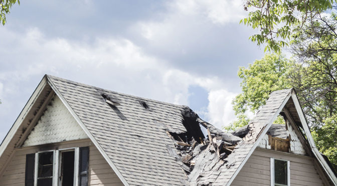 What to Do Immediately After Fire Damage