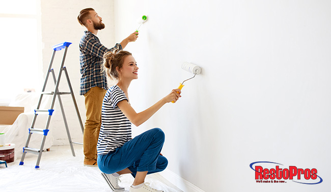 Should You Paint Over Mold